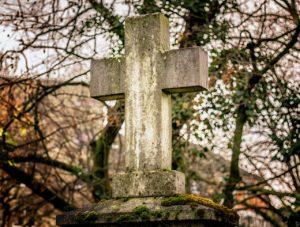 Nie Ma Lipy - wycinka na cmentarzu - etap 1