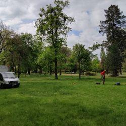 Pielęgnowanie drzew - Park Marii Dąbrowskiej Wrocław