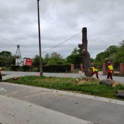 usuwanie drzewa w pasie drogowym na Stabłowicach