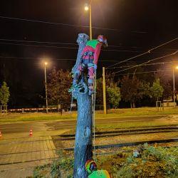 wycinka drzewa przy trakcji we Wrocławiu