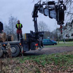 transport drewna z koziorogiem